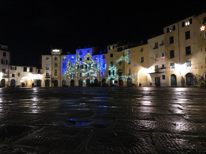 Alberi e renne in piazza Anfiteatro di Giorgio Lucca