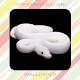White Snake Wallpaper HD Download for PC Windows 10/8/7