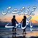 Teri mohabbat mein pagal huy Urdu novel apk