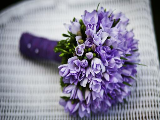 住花卉壁紙