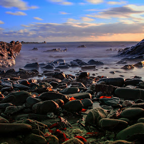 Rocky beach in Cornwall UK by Tony Simcock Eadie - Landscapes Beaches ( colour, sunset, texture, seaweed, long exposure, seascape, landscape, rocks, light,  )