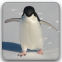 Full of Penguins ! icon