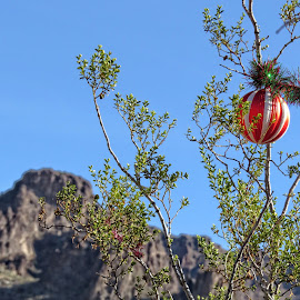 Holiday Roadside Decoration by Nancy Young - Public Holidays Christmas ( mountain, sky, decoration, christmas, roadside )