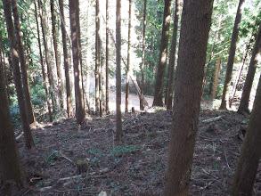 林道へ降りる