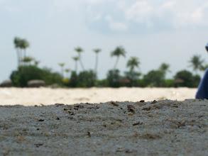 Photo: Singapore Beach