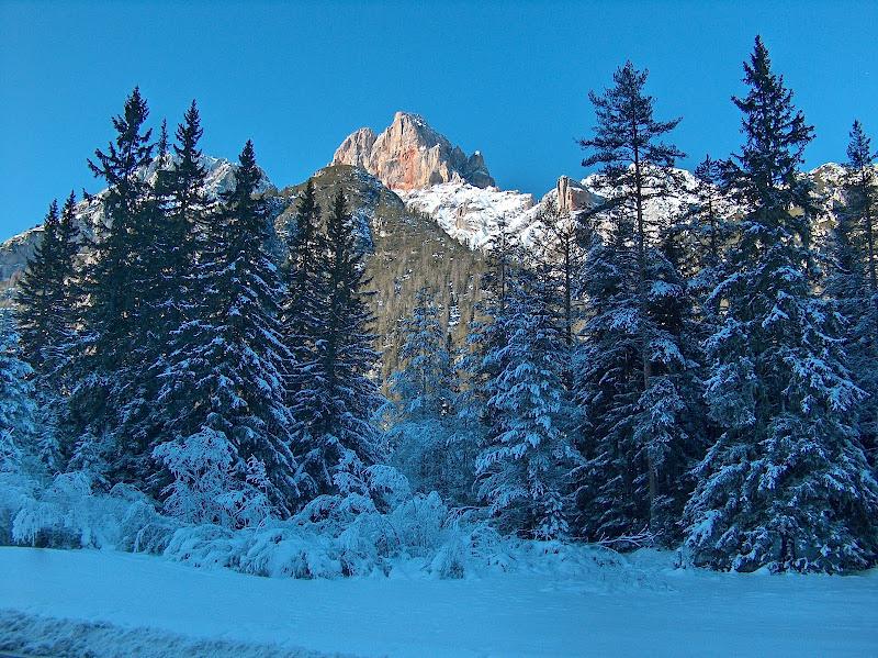 Valle tra le Dolomiti bellunesi di Paolo_G