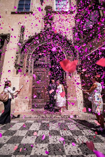 Wedding photographer Milan Lazic (wsphotography). Photo of 17.07.2015