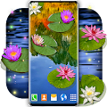 Water Lily Live Wallpaper 🌺 Flowers Wallpapers APK