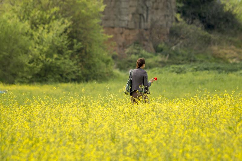 prime passeggiate tra i fiori di Andrea Calò