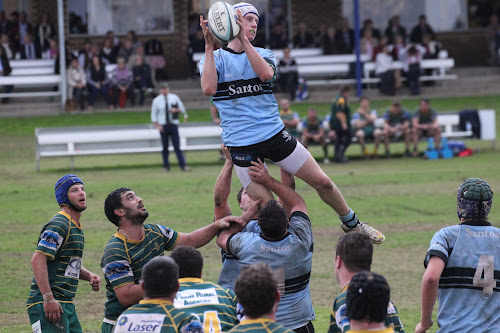 Linton Grumley rises to win an uncontested lineout in the Blue Boars 25-12 win over Inverell on Saturday afternoon at Dangar Park.