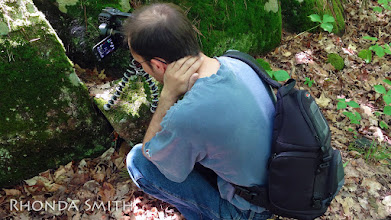 Photo: Steve filming a spider web.