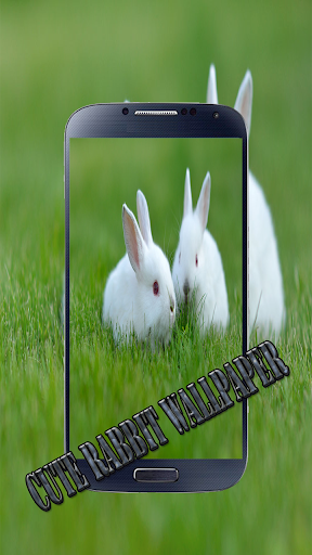 ... Screenshot for Cute Rabbit Wallpaper in United States Play Store ...