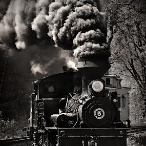 Days of the Train by Chuck  Gordon  - Transportation Trains ( steam train smoke, black and white )