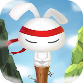 Kungfu Rabbit Dash