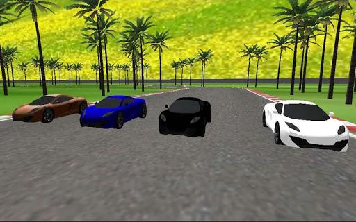 チャンピオン 車 レーシング