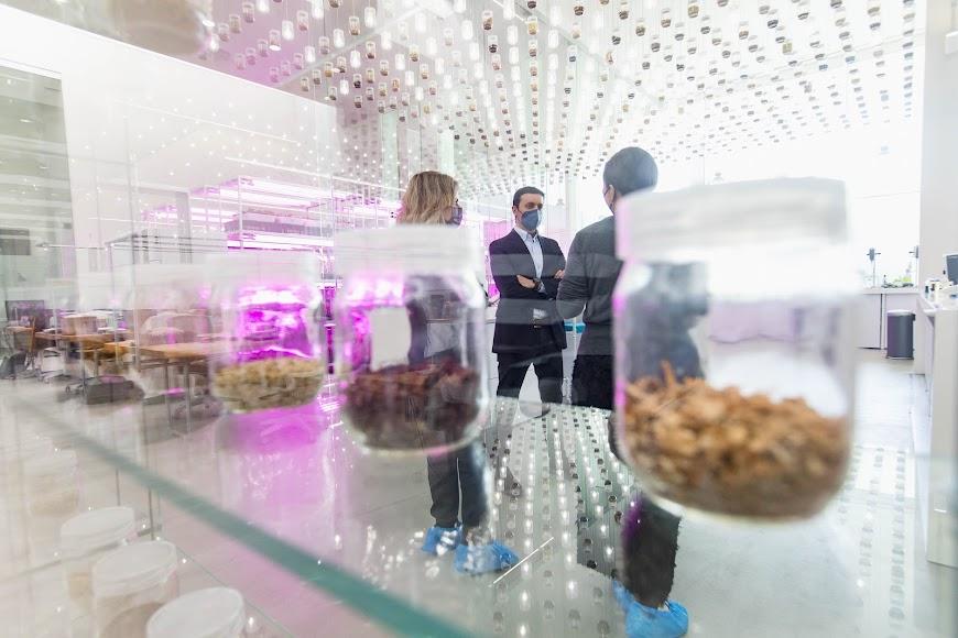 Kimitec exporta innovación agrícola desde Almería a 94 países.