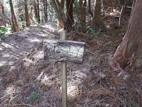 先程の林道と合流