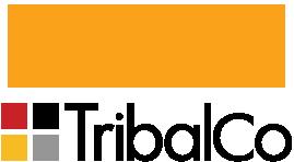 Ambra Health and Tribalco logo
