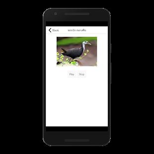 Beck ptáci pták - náhled