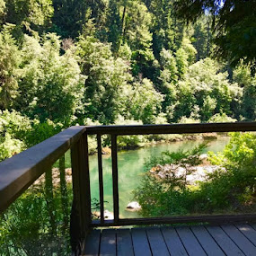 Some photos taken from our cabin house deck on the Umpqua River.  Photos by scenebyawoman ~ by Janet Young- Abeyta - Landscapes Waterscapes