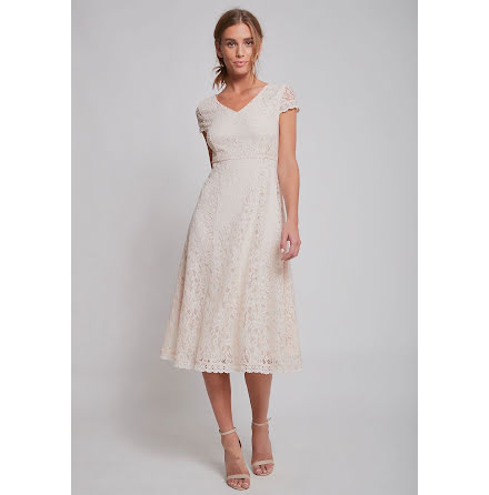 Dry Lake Jackie mid dress champagne lace