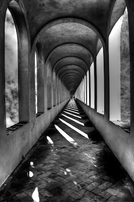 Io non so ben ridir com'i' v'intrai........ di Gianluca Presto