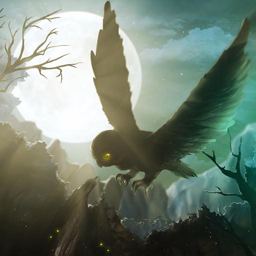 Owl's Midnight Journey