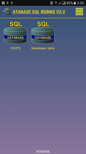 SQL relational database system