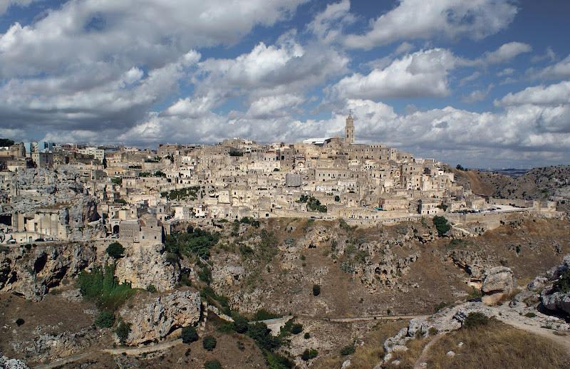 Capitale Europea della cultura di Amadeus