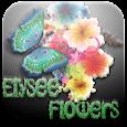 Florarie Bucuresti icon