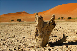 Photo: sossusvlei