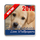 Puppies Live Wallpaper