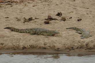 Photo: Kruger National Park. Crooks Corner