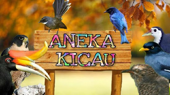 Kicau Kenari Gunung/Melayu - náhled