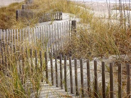 Grass, Fence, Sand, Dunes, Grasses