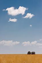 Photo: Etosha National Park, Namibia