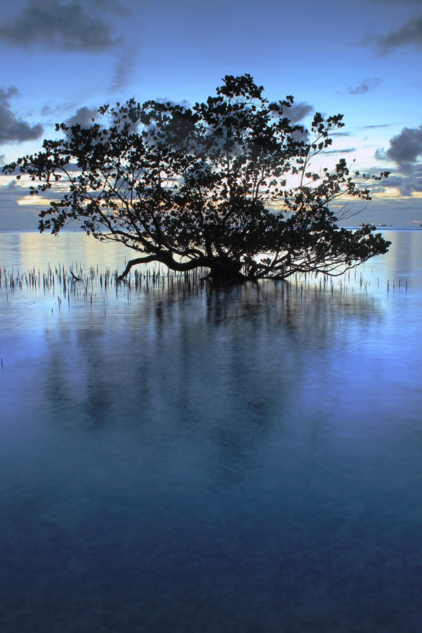 lonely alone by Ariza Hayari - Novices Only Landscapes