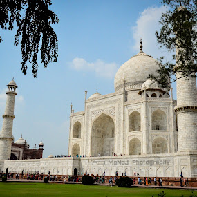by Manoj Swaminathan - Buildings & Architecture Statues & Monuments ( taj, marble, building )