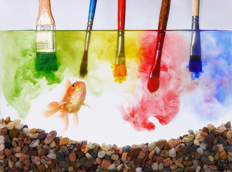 Pranzo a colori di Sergio Rapagnà