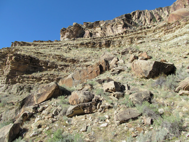 A steep, rocky hillside; I climbed to the base of the cliff in the upper-left