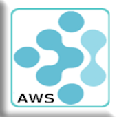 mFieldwork for AWS