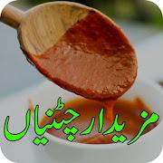 Sauce Recipes/Pakistani Chatnian APK for Bluestacks