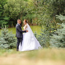 Wedding photographer Mikhail Chorich (amorstudio). Photo of 24.10.2017