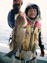 Photo: いいサイズのオオモンハタ!