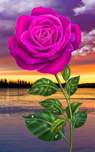 Rose. Magic Touch Flowers screenshots 3