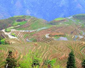 Photo: Rice Terraces, China