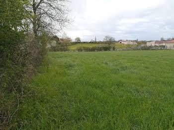 terrain à Bazoges-en-Pareds (85)