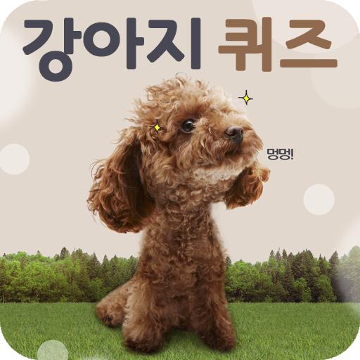 강아지퀴즈-견종,퀴즈,퀴즈퀴즈,강아지키우기,애완동물