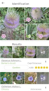 PlantNet Plant Identification 3.0.5 APK Mod for Android 2