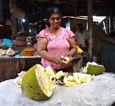Photo: Jackfruit Tangalle Sri Lanka  Flowers Spices & Fruits At Bawa's Place Matale Sri Lanka by Lou Wilson http://www.youtube.com/watch?v=nvgc_SYJgeY&list=UUOWXy3pH6EQJsCMU4_wseBA&index=4&feature=plcp